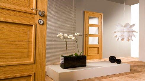 Какие бывают виды межкомнатных дверей?